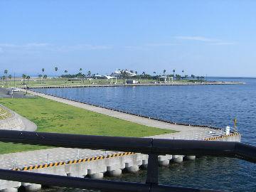 埠頭の写真